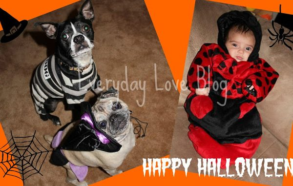 Protected: Happy Halloween!